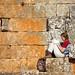 Syrië and Jordanië-02018 © Bart Plessers