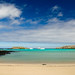 Ecuador and Galapagos-1705 © Bart Plessers