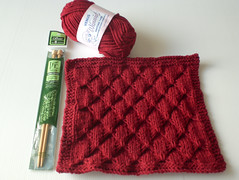 Smock Dishcloth with yarn and needle