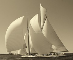 Eleonora  ,2008 Newport Classic Yacht regatta photo by ⚓ L u s i t a n © ⚓