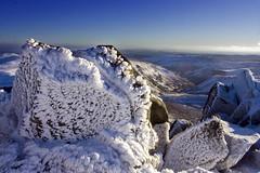 Snow Pattern photo by Natasha Bridges