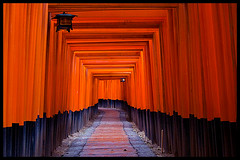 Torii at Fushimi-Inari Taisha, Kyoto photo by Eric Flexyourhead