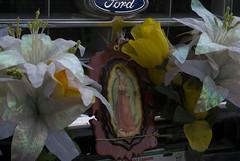 Peregrinos Virgen de Guadalupe