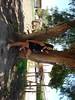 3221174579_9aee06d9a7_t
