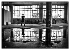 Ben and Ben's Reflection (bw) photo by JCg...