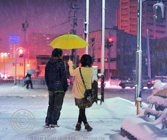 Snowy Wednesday Night in Hirosaki. © Glenn Waters.Japan.  Over 30,000 visits to this photo. photo by Glenn Waters ぐれんin Japan.