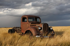 Rusty old 1939 Ford truck photo by dave_7