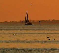 Evening Sail photo by priscilla.starling