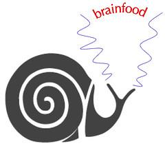 SFP brainfood I