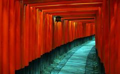 kyoto - fushimi inari toriis photo by Xuan Che