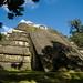 Guatemala & Belize-4642 © Bart Plessers