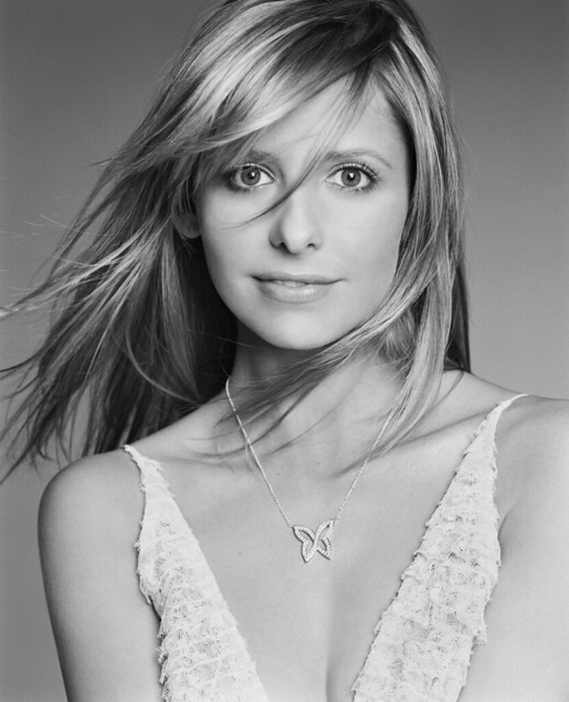 sarah michelle gellar buffy the vampire slayer. Sarah Michelle Gellar as Buffy
