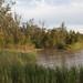 E.J. Beardmore Dam