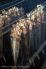 3_0767-Roast Flyingfish, Taitung, Taiwan 台東長濱-烤飛魚-食物 photo by 棟樑‧Harry‧黃基峰‧Taiwan
