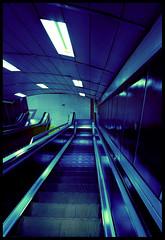 La escalera azul