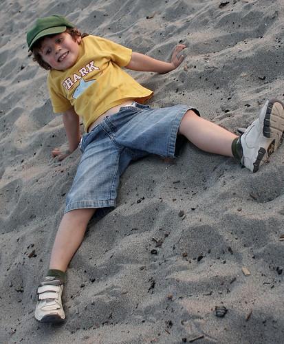 shark on the sand