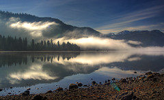 Fog reflections photo by TomFalconer