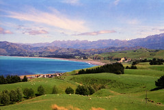 Nature and Whale Watching in Kaikoura - New Zealand photo by Batikart