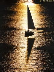 Sail Away by amythyst_lake