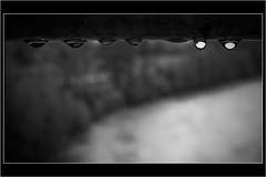 ...lacrime photo by ◄ Daniele Porceddu ►