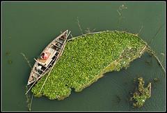 Perseverance [..Manikganj, Bangladesh..] photo by Catch the dream