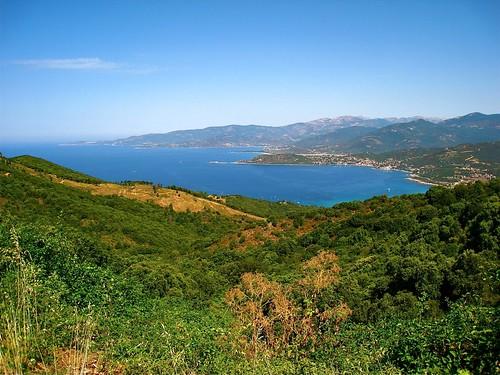 forêt Méditerranée