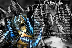 The Hedonist photo by J316