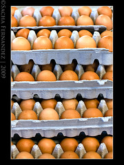 Cartons of Eggs photo by sachman75