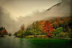 Autumn photo by scarbody