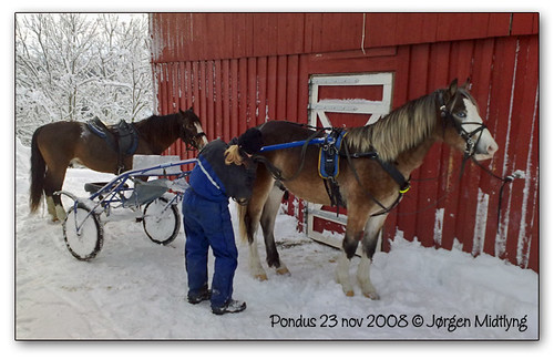 23nov-2008_07