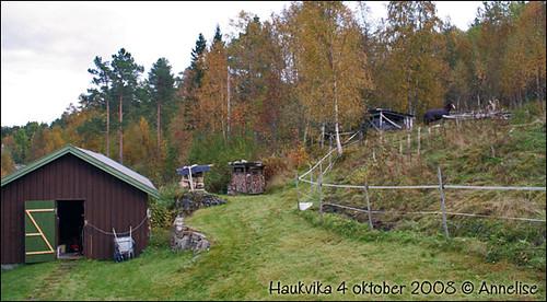haukvika-4okt-2008_01