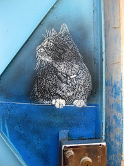 C215 - Mirleft (Morocco) photo by C215