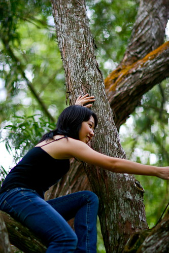 Treeclimber!