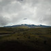 Ecuador and Galapagos-2541 © Bart Plessers
