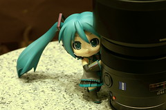 Miku and Carl Zeiss 85/1.4ZA (PICT0015) photo by Kelvin 相機下的世界