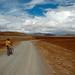 Peru-6153 © Bart Plessers