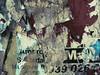 2976632370_1f4dc7eee0_t