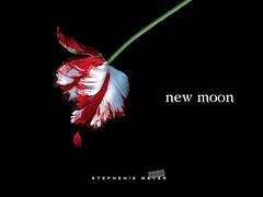 New Moon (2) photo by Lia Lake
