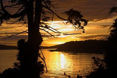 Tofino sunset 3 photo by moelynphotos