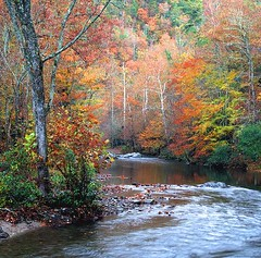 Fall in the Smokies photo by Bernie Kasper