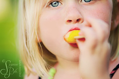 Popsicles and Freckles photo by Suzanne Pyle Photography
