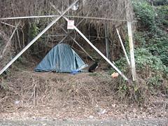 Homeless Sweet Homeless