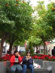 Makan Buah Limau di Cordoba, Spain