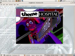 Theme Hospital on Ubuntu via DosBox