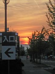 Sunset Street #3