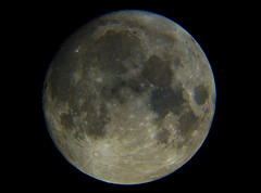 Luna CRW_3578