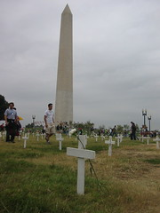 Flower, Cross, and Washington Monument