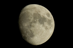 11th Moon