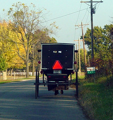 Bug. Looking At The Back Of An Amish Buggy Is A Mon Site For Me When I'm On Road In Indiana Are Some Shrewd Business Owners. Lincoln. 93233 Lincoln Bottle Jack Parts Diagram At Scoala.co