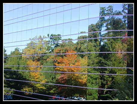 Autumn Trees Reflected in the Raleigh Corporate Center building